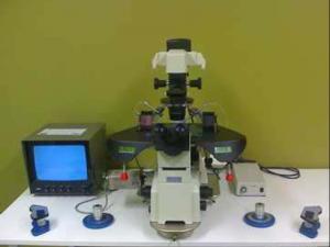 Μικροσκόπιο Μικρογονιμοποίησης (ICSI)